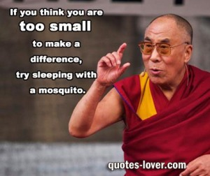 If-you-think-are-too-small-to-make-a-difference-try-sleeping-with-a-mosquito