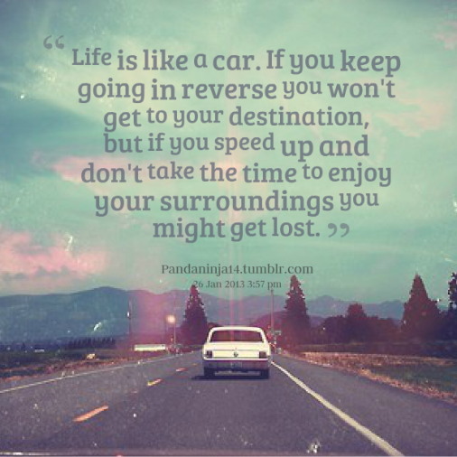 life-is-like-a-car-if-you-keep-going-in-reverse-you-wont-get-to-your-destination-but-if-you-speed-up-and-dont-take-the-time-to-enjoy-your-surroundings-you-might-get-lost.png